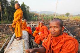http---4.bp.blogspot.com--CmanL6_5uz4-UZSaoJhI4mI-AAAAAAAAR6Q-98W_ZsEp5HE-s1600-Cardamom+03+-+Monk+defending+forest+(Luke+Duggleby)