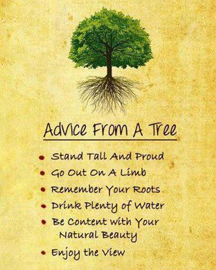 http---griefandmourning.com-wp-content-uploads-2013-05-Advice-from-a-Tree-Earth.WeAreOne1