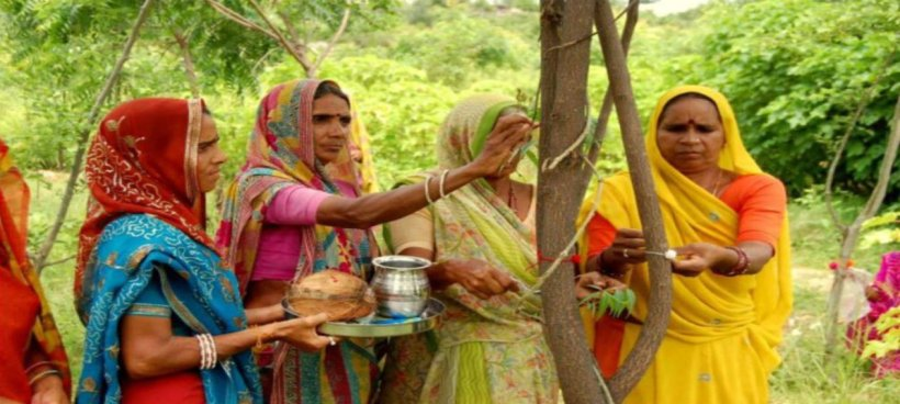 this_amazing_village_in_india_plants_111_trees_every_time_a_girl_is_born_hero.jpg__1264x568_q85_crop_subsampling-2